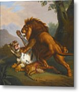 A Lion And Tiger In Combat Metal Print