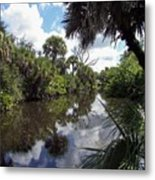 a little bit of Florida Metal Print