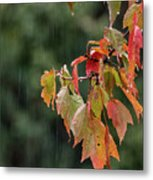 A Little Rain Must Fall Metal Print