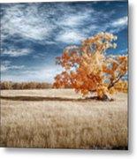 A Lone Tree Metal Print