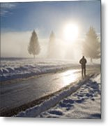 A Lonely Winter Metal Print