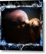 A Look Into Another World Metal Print