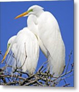 A Loving Couple Metal Print