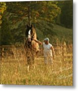 A Man And His Horse Metal Print by Terry Kirkland Cook