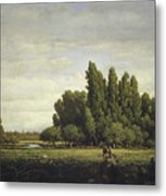 A Meadow Bordered By Trees Metal Print