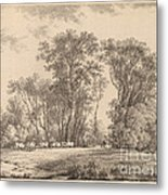A Meadow With Cattle At The Edge Of A Wood Metal Print