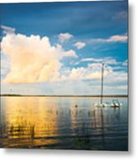 A Moment In A Jump  Metal Print