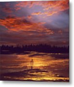 A Moment Of Reflection Metal Print