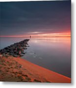 A Moment Of Shine Metal Print