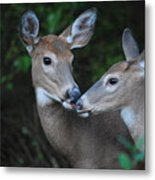 A Moms Touch Metal Print