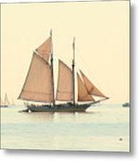 A Morning In Maine Metal Print