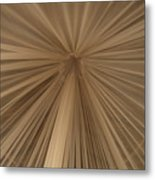 A Mosquito Net, Viewed From The Inside Metal Print