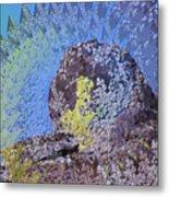 A Mossy Rock  Metal Print