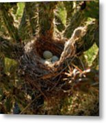 A Mothers Protection Metal Print