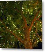 A Murmer In The Trees Metal Print by Guy Ricketts