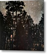 The Forest Night Metal Print
