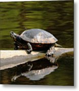 A Painted Reflection Metal Print