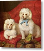 A Pair Of Poodles Metal Print