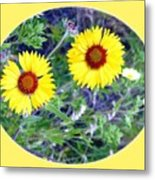 A Pair Of Wild Susans Metal Print