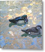 A Pair Of Wood Ducks Metal Print