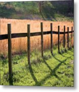 A Path Seldom Taken Metal Print