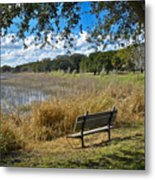 A Peaceful Place Metal Print