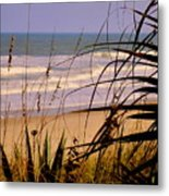 A Peek At The Shore Metal Print