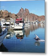 A Pelican Lands In The Old San Carlos Marina, Guaymas, Sonora, M Metal Print