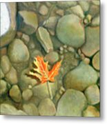 A Perfect Serenity Metal Print