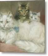 A Persian Cat And Her Kittens Metal Print by Maud D Heaps