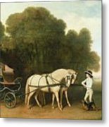 A Phaeton With A Pair Of Cream Ponies In The Charge Of A Stable-lad Metal Print