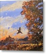 A Pheasent At Sundown Metal Print