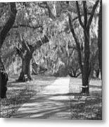 A Place For Contemplation - Black And White Metal Print