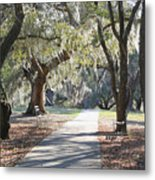 A Place For Contemplation  Metal Print