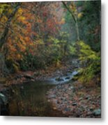 A Place for Tears Metal Print