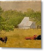 A Place For Togetherness Metal Print by Jan Amiss Photography