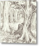 A Place To Rest In The Trees Metal Print