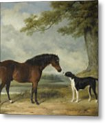 A Pony With A Dog Metal Print