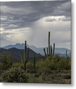 A Rainy Desert Afternoon  Metal Print