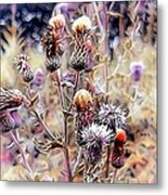 A Rather Thorny Subject Metal Print