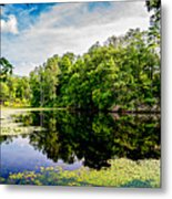 A Reflected Forest On A Lake With Lily Pads Metal Print
