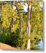 A River Walk Metal Print