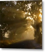 A Road Less Traveled Metal Print by Mike  Dawson