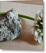 A Rock And A Soft Place Metal Print