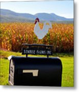 A Rooster Above A Mailbox 2 Metal Print
