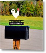 A Rooster Above A Mailbox 3 Metal Print