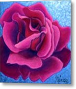 A Rose Is A Rose.. Metal Print