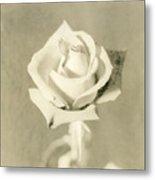 A Rose Of Alternate Processed Metal Print