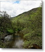 A Scottish Stream Metal Print