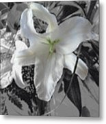 A Sense Of Purity Metal Print